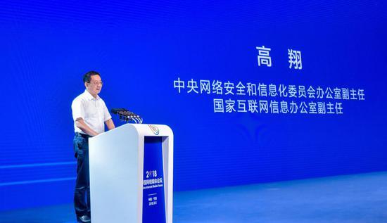 中央网络安全和信息化委员会办公室副主任、国家互联网信息办公室副主任 高翔